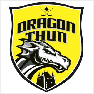 Verein-Logo-hc-dragon-thun